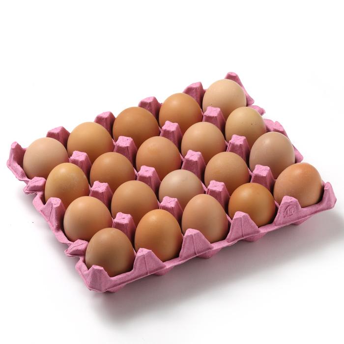 グルメ卵20個